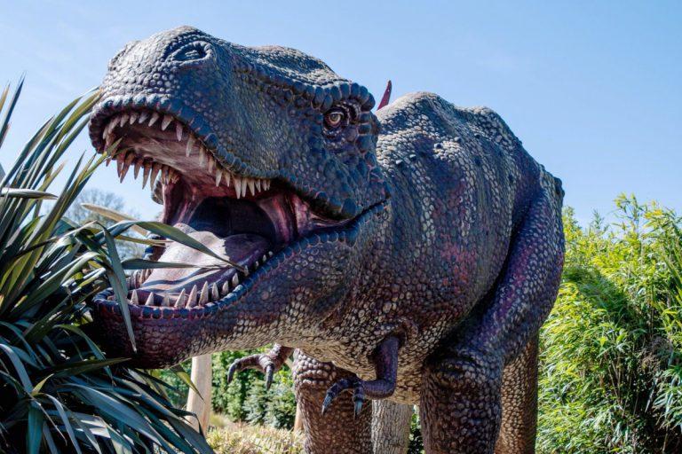 Roarr! Dinosaur Adventure