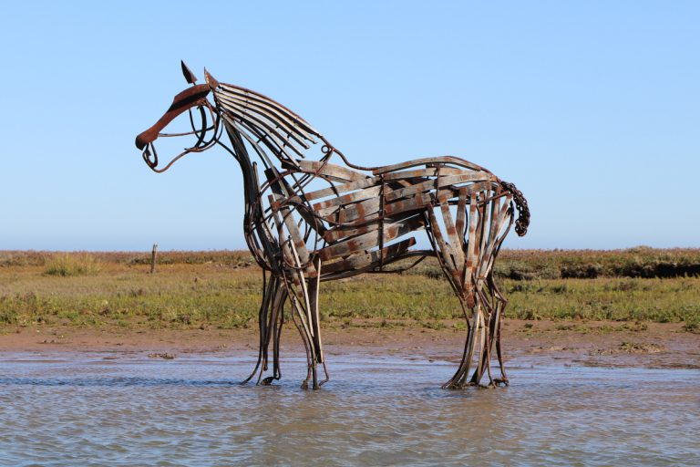 The Lifeboat Horse